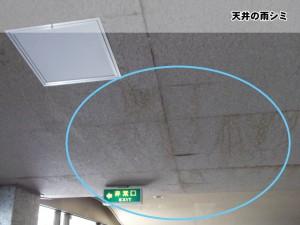天井の雨シミ