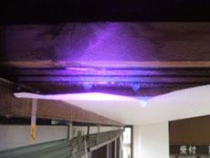 紫外線照射発光テスト確認